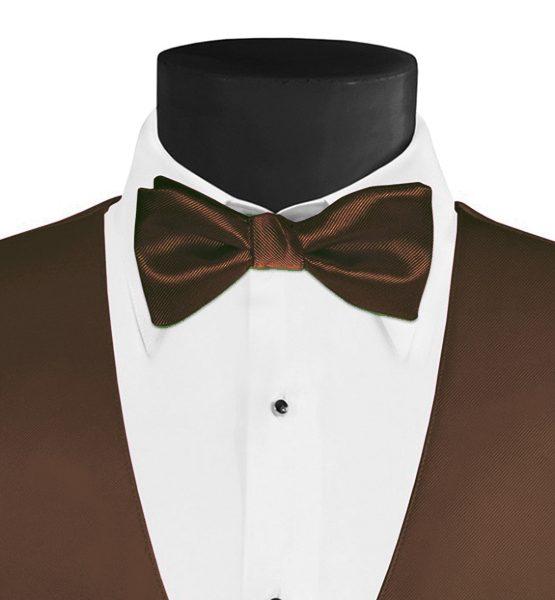 Larr Brio Modern Solid Bronze Bow Tie