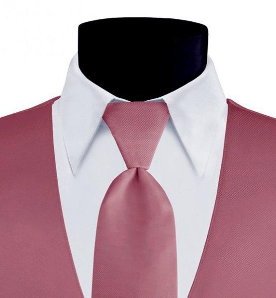 Larr Brio Modern Solid Ballot Long Tie
